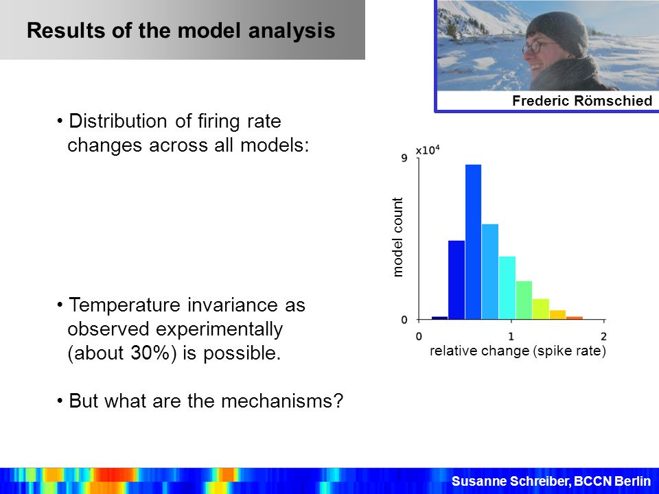 Results of the model analysis Distribution of firing rate changes across all models: Temperature invariance as observed experimentally (about 30%) is