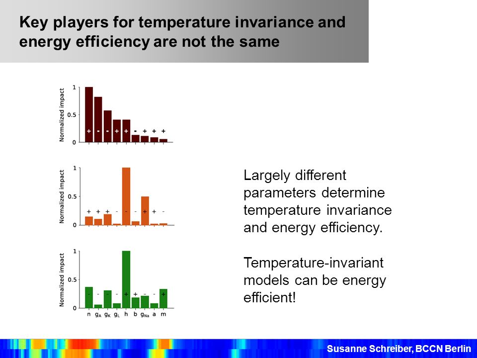 Key players for temperature invariance and energy efficiency are not the same Largely different parameters determine temperature invariance and energy