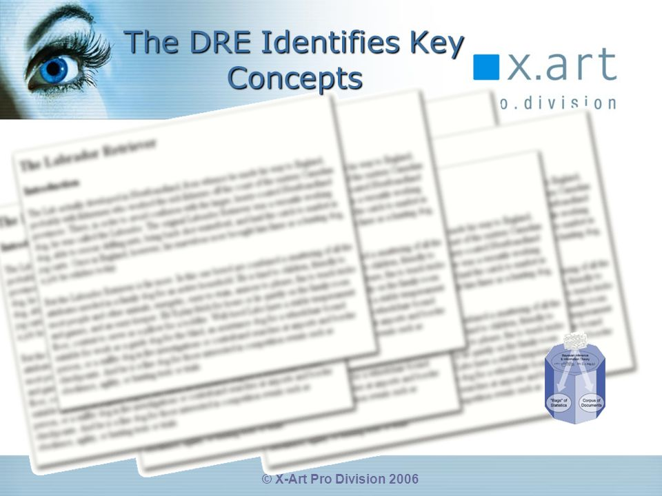 © X-Art Pro Division 2006 The DRE Identifies Key Concepts