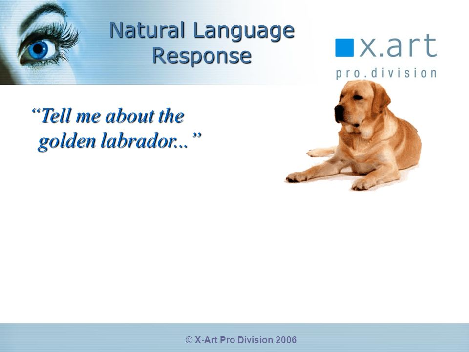 © X-Art Pro Division 2006 Natural Language Response Tell me about the golden labrador...