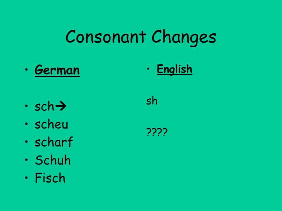 Consonant Changes German sch scheu scharf Schuh Fisch English sh ????