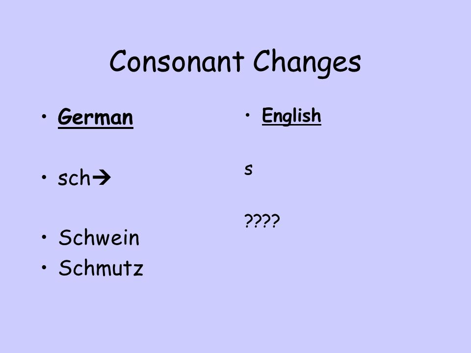 Consonant Changes German sch Schwein Schmutz English s