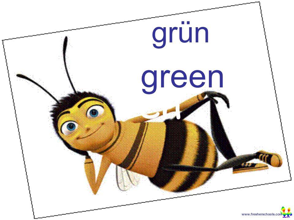 www.fresherschools.com Ben grün green