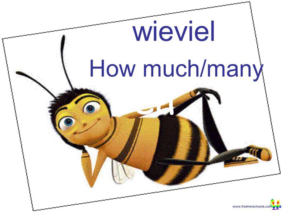 www.fresherschools.com Ben wieviel How much/many