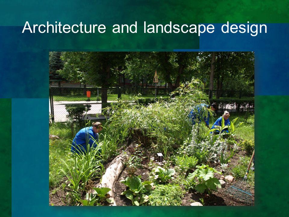 Architecture and landscape design