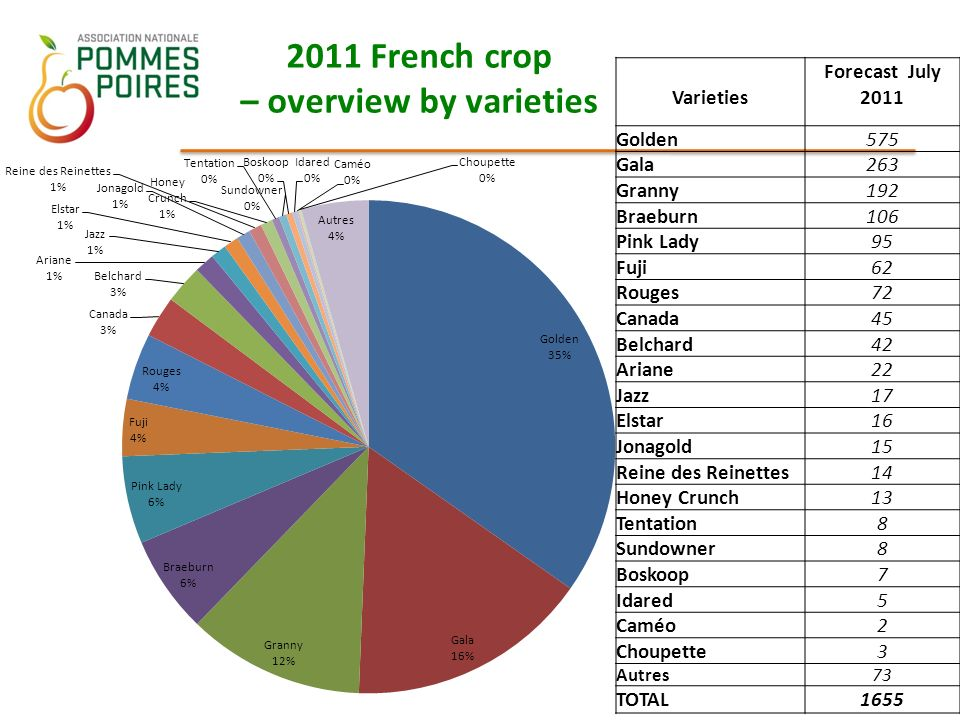 2011 French crop – overview by varieties Varieties Forecast July 2011 Golden575 Gala263 Granny192 Braeburn106 Pink Lady95 Fuji62 Rouges72 Canada45 Belchard42 Ariane22 Jazz17 Elstar16 Jonagold15 Reine des Reinettes14 Honey Crunch13 Tentation8 Sundowner8 Boskoop7 Idared5 Caméo2 Choupette3 Autres73 TOTAL1655