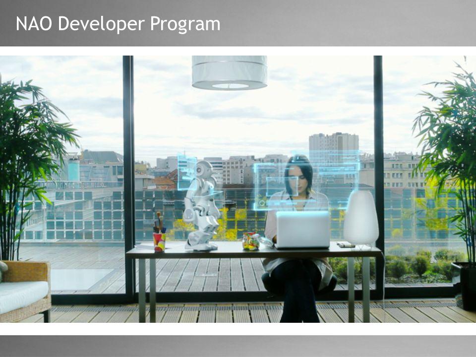 NAO Developer Program