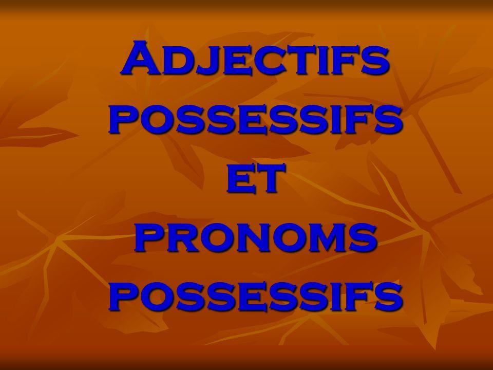 Adjectifs possessifs et pronoms possessifs