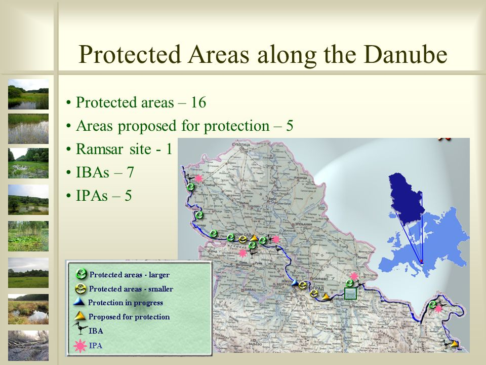 Protected Areas along the Danube Protected areas – 16 Areas proposed for protection – 5 Ramsar site - 1 IBAs – 7 IPAs – 5 IPA