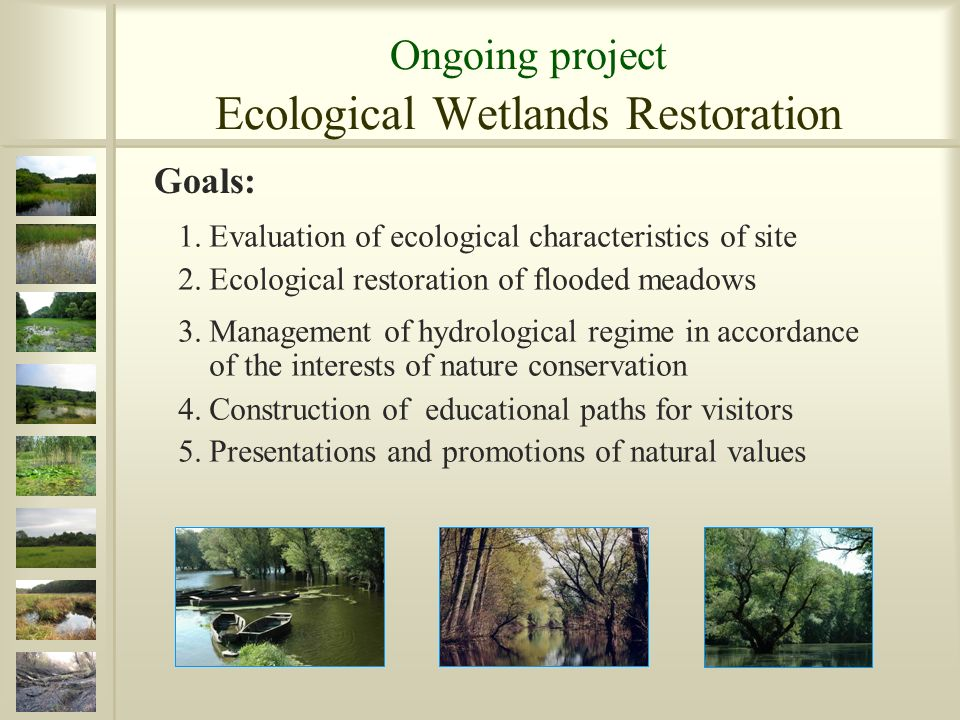 1.Evaluation of ecological characteristics of site 2.Ecological restoration of flooded meadows 3.Management of hydrological regime in accordance of the interests of nature conservation 4.Construction of educational paths for visitors 5.Presentations and promotions of natural values Goals: Ongoing project Ecological Wetlands Restoration