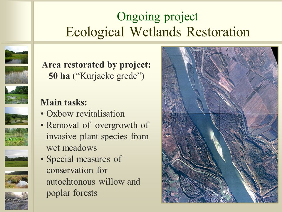 Main tasks: Oxbow revitalisation Removal of overgrowth of invasive plant species from wet meadows Special measures of conservation for autochtonous willow and poplar forests Area restorated by project: 50 ha (Kurjacke grede)