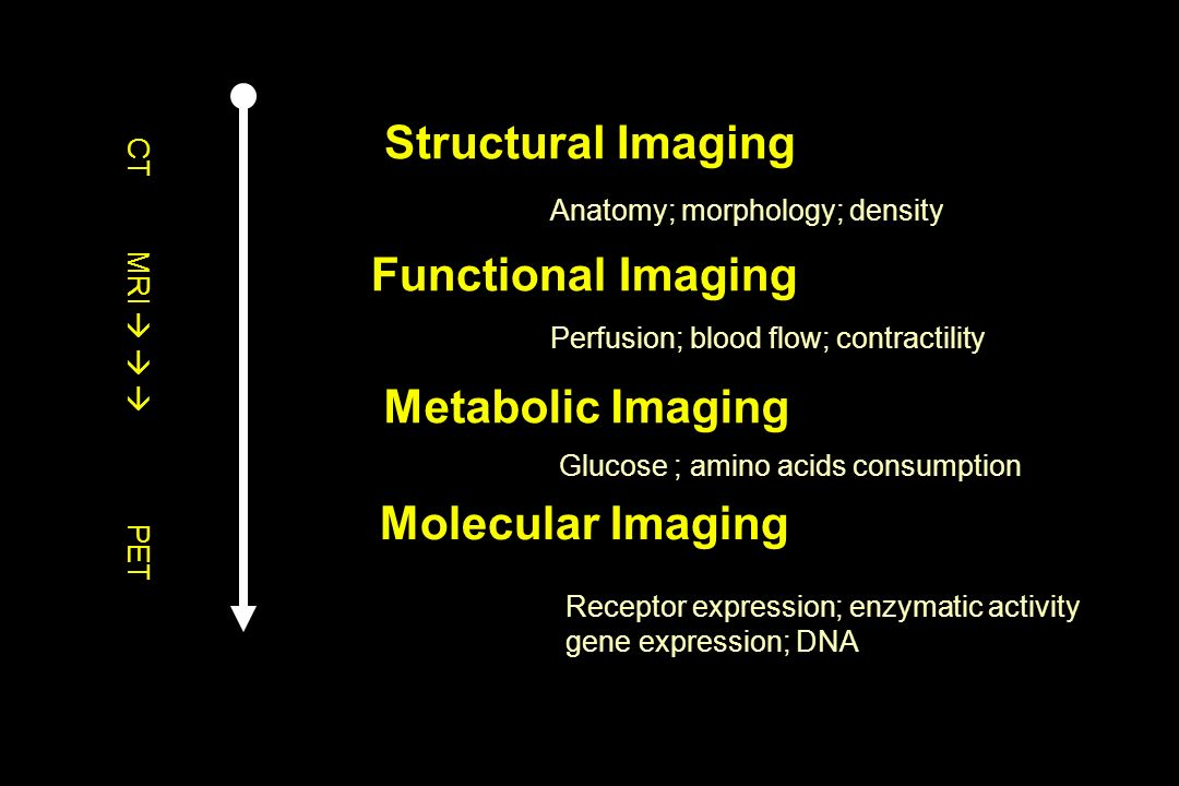 Structural Imaging Metabolic Imaging Functional Imaging Molecular Imaging Anatomy; morphology; density Perfusion; blood flow; contractility Glucose ;