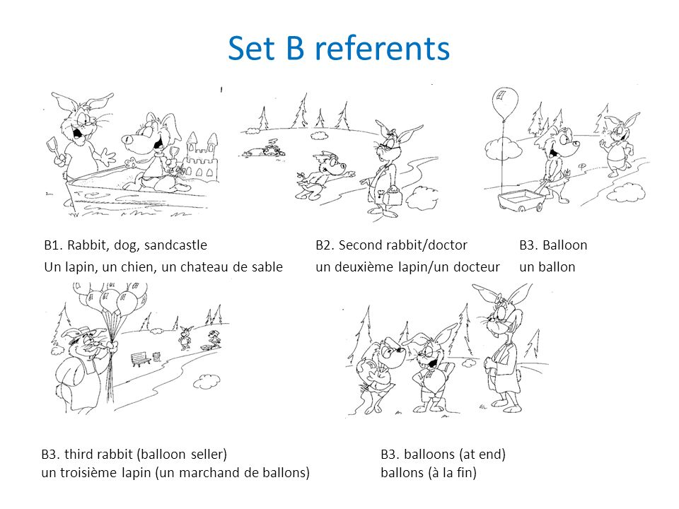 Set B referents B1. Rabbit, dog, sandcastleB2. Second rabbit/doctorB3.