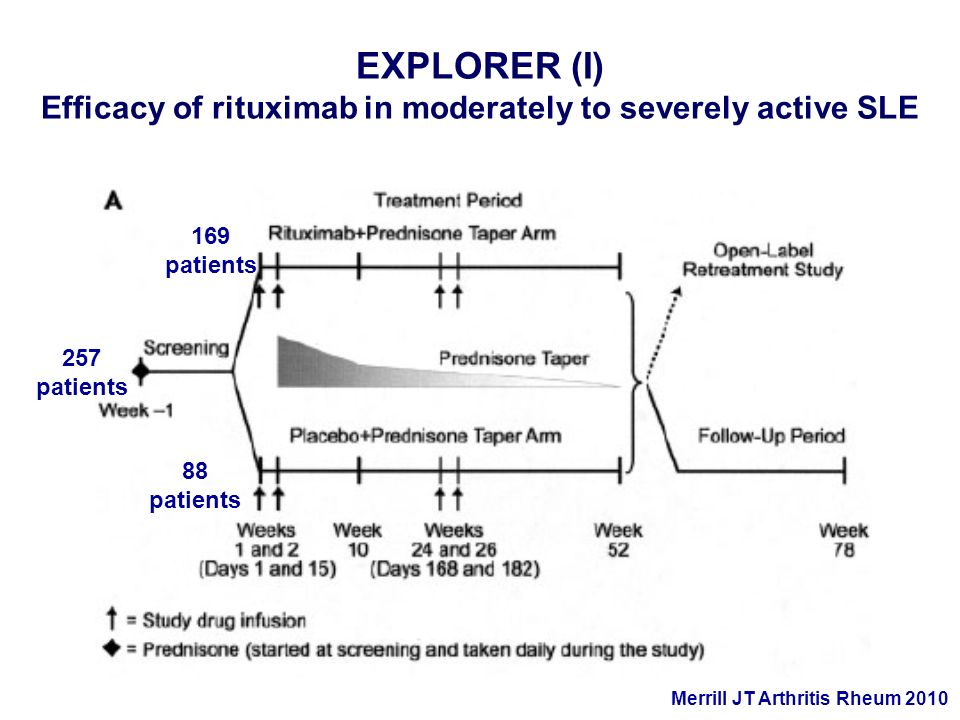 EXPLORER (I) Efficacy of rituximab in moderately to severely active SLE Merrill JT Arthritis Rheum 2010 257 patients 88 patients 169 patients