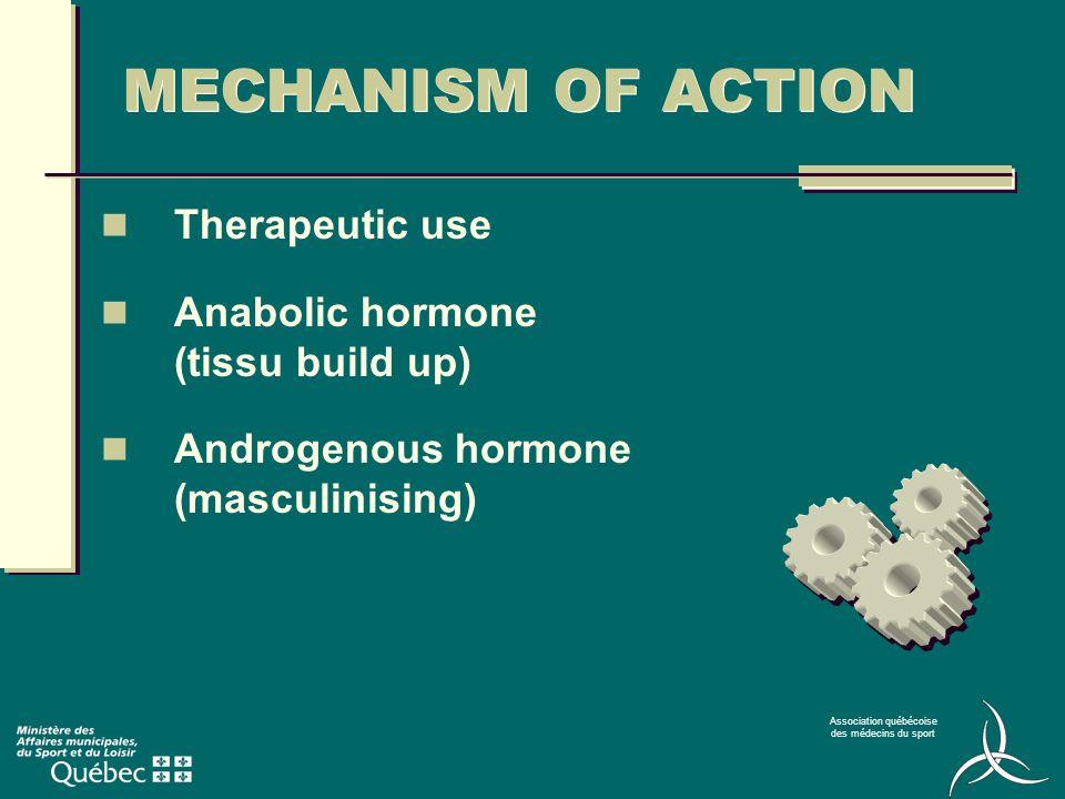 Association québécoise des médecins du sport AAS synthetic (nandrolone, THG, …) Prohormones (DHEA, …) Subcategories of Steroids
