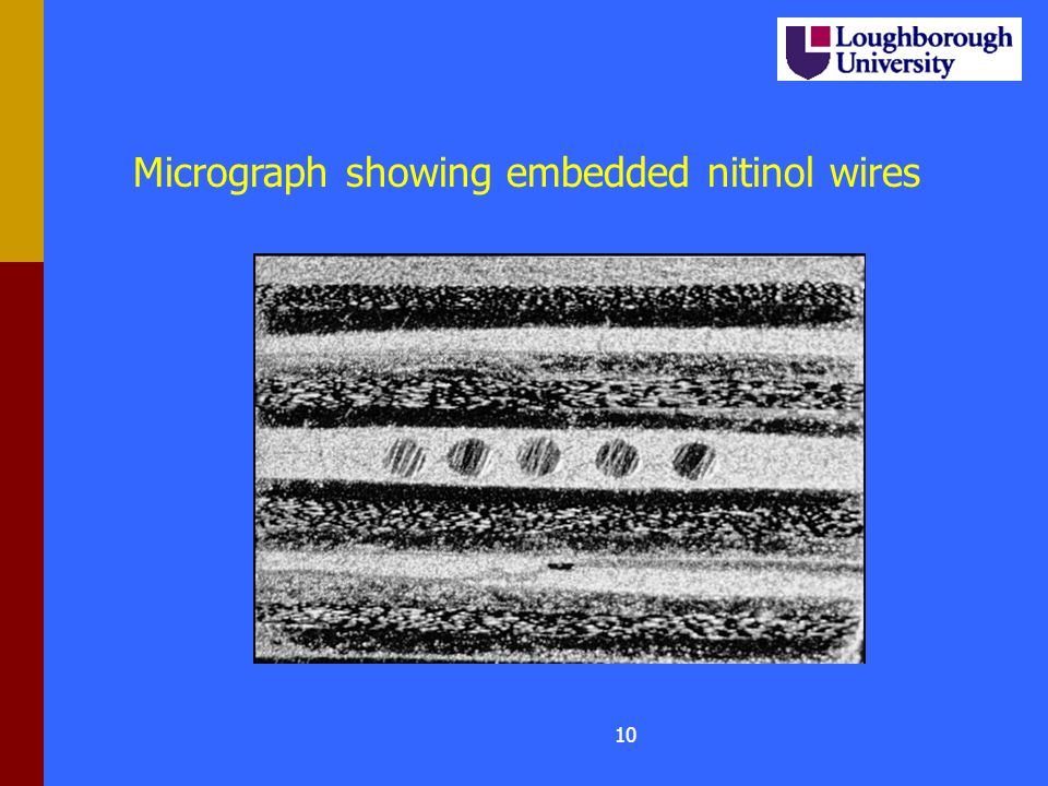 9 Micrograph showing embedded OFs