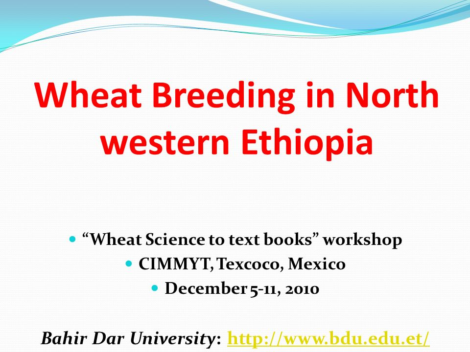 Wheat Breeding in North western Ethiopia Wheat Science to text books workshop CIMMYT, Texcoco, Mexico December 5-11, 2010 Bahir Dar University: http:/