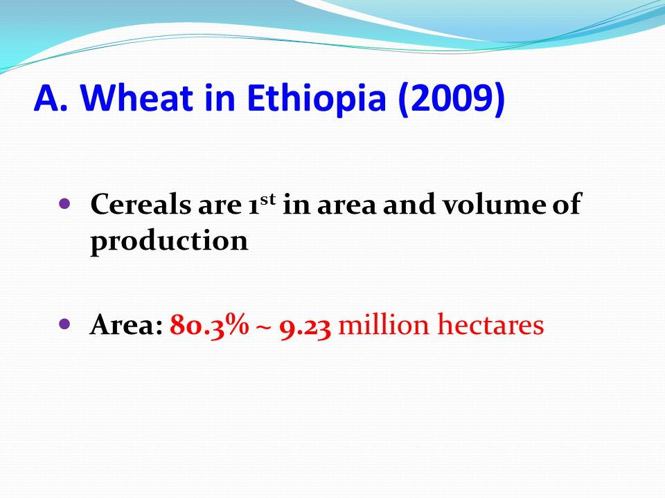 A. Wheat in Ethiopia (2009) Cereals are 1 st in area and volume of production Area: 80.3% ~ 9.23 million hectares