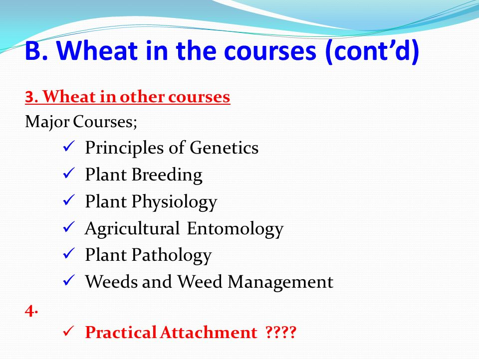 B. Wheat in the courses (contd) 3. Wheat in other courses Major Courses; Principles of Genetics Plant Breeding Plant Physiology Agricultural Entomolog