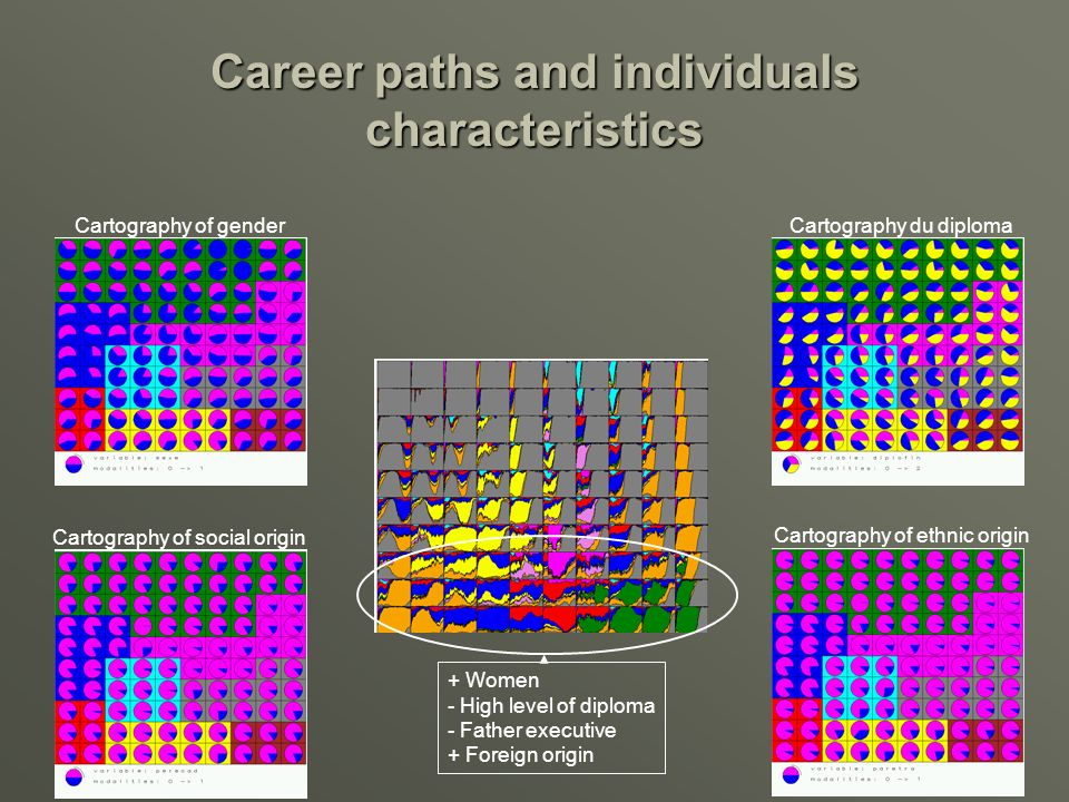 Career paths and individuals characteristics Cartography of ethnic origin Cartography du diploma Cartography of social origin Cartography of gender + Women - High level of diploma - Father executive + Foreign origin