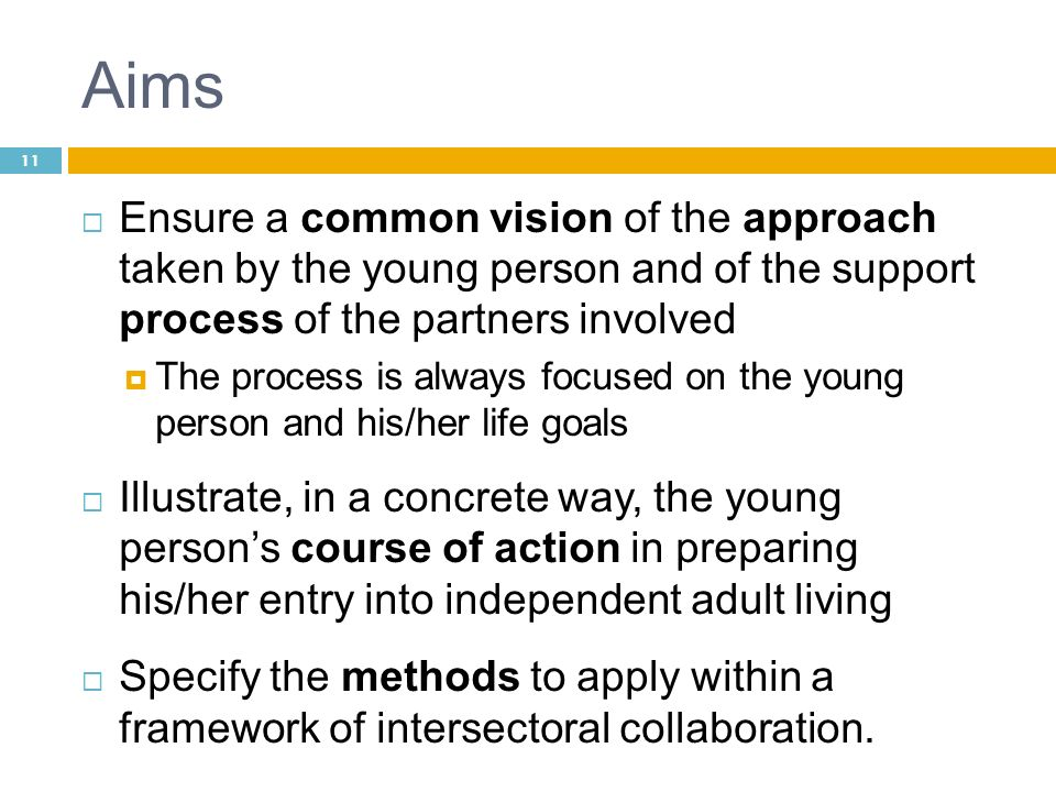 Aims Ensure a common vision of the approach taken by the young person and of the support process of the partners involved The process is always focuse