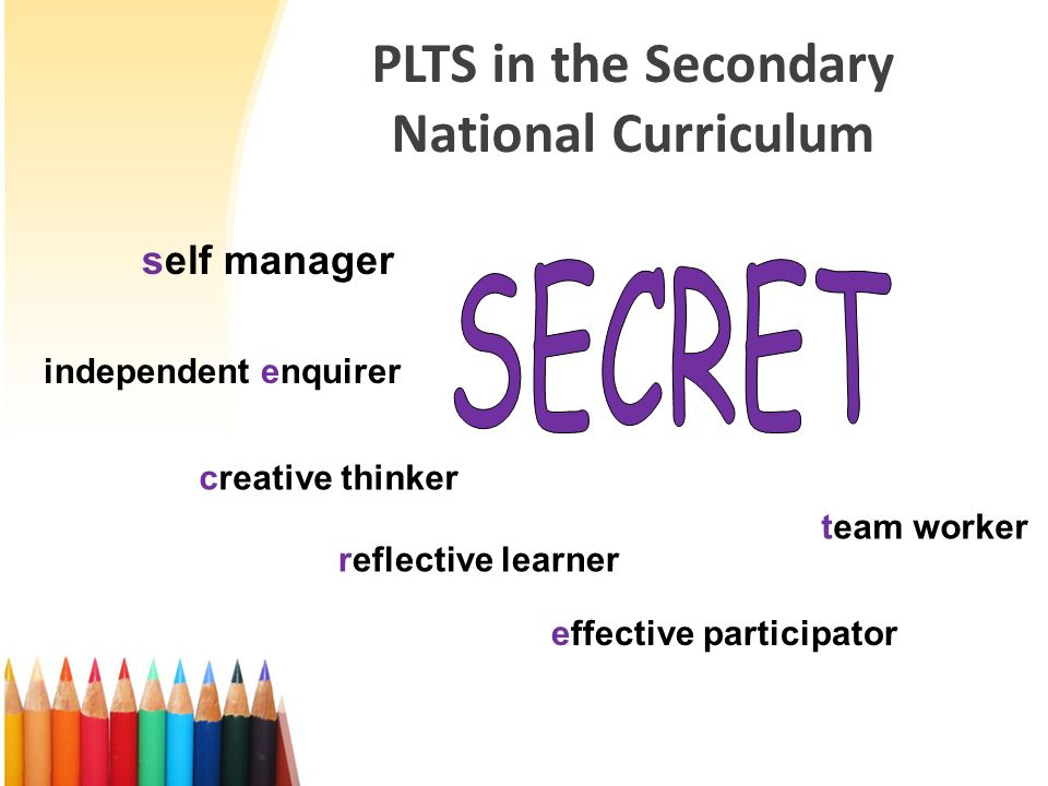 PLTS in the Secondary National Curriculum 6 groups of Personal Learning Thinking Skills: Self-Manager Independent Enquirer Creative Thinker Reflective Learner Effective Participator Team Worker