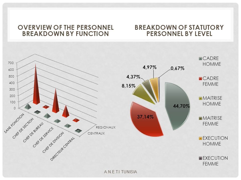 OVERVIEW OF THE PERSONNEL BREAKDOWN BY FUNCTION BREAKDOWN OF STATUTORY PERSONNEL BY LEVEL A.N.E.T.I TUNISIA