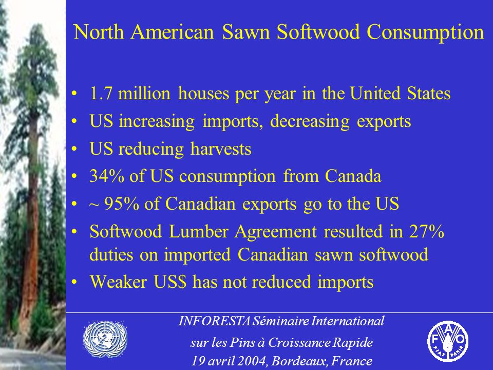 INFORESTA Séminaire International sur les Pins à Croissance Rapide 19 avril 2004, Bordeaux, France North American Sawn Softwood Consumption 1.7 million houses per year in the United States US increasing imports, decreasing exports US reducing harvests 34% of US consumption from Canada ~ 95% of Canadian exports go to the US Softwood Lumber Agreement resulted in 27% duties on imported Canadian sawn softwood Weaker US$ has not reduced imports