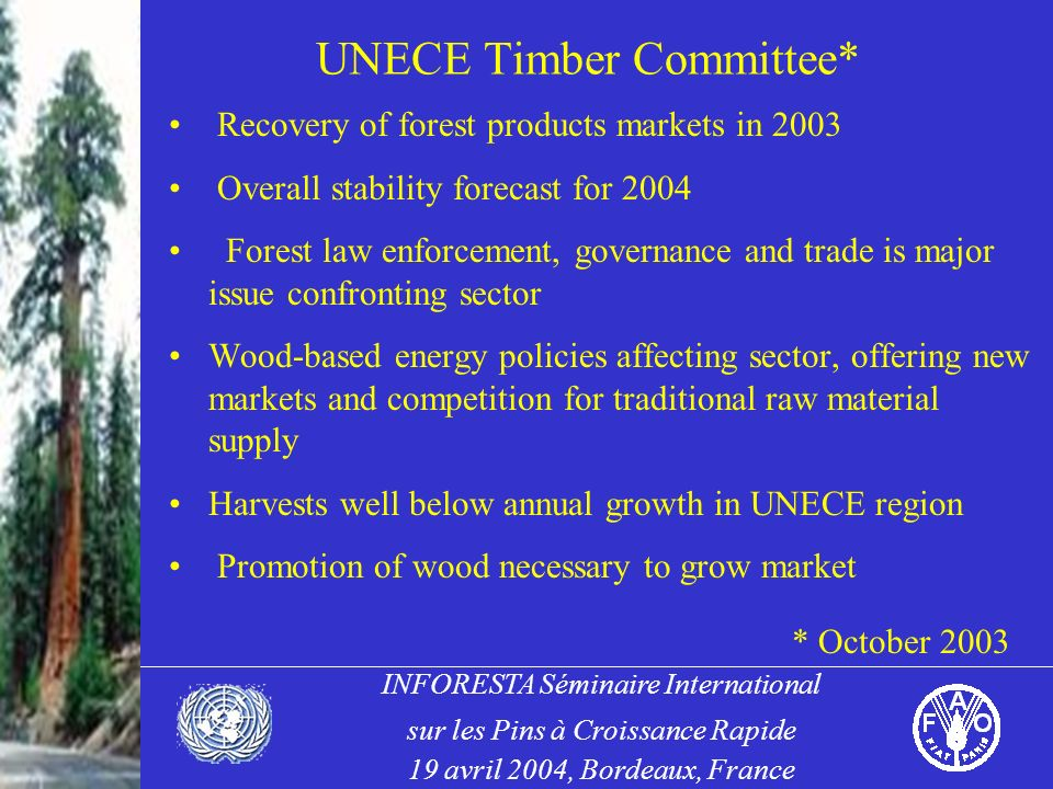 INFORESTA Séminaire International sur les Pins à Croissance Rapide 19 avril 2004, Bordeaux, France UNECE Timber Committee* Recovery of forest products