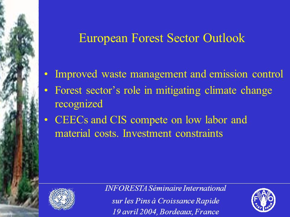 INFORESTA Séminaire International sur les Pins à Croissance Rapide 19 avril 2004, Bordeaux, France European Forest Sector Outlook Improved waste management and emission control Forest sectors role in mitigating climate change recognized CEECs and CIS compete on low labor and material costs.