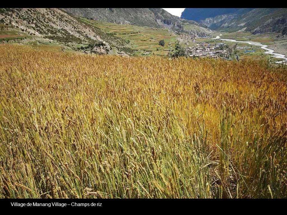Thorong~La Pass – 5416 Meter