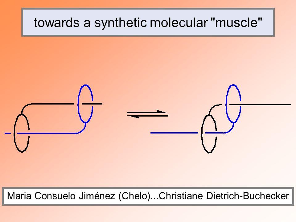 towards a synthetic molecular