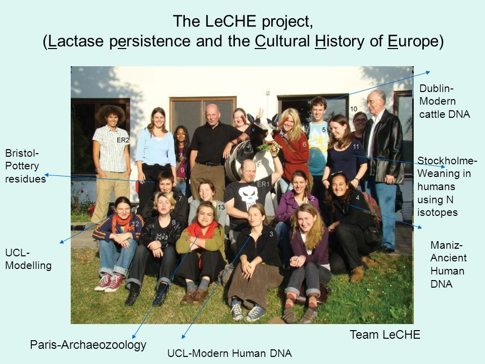 Previous milk model Archaeozoology and LeCHE, detecting dairy practices in Neolithic Europe.