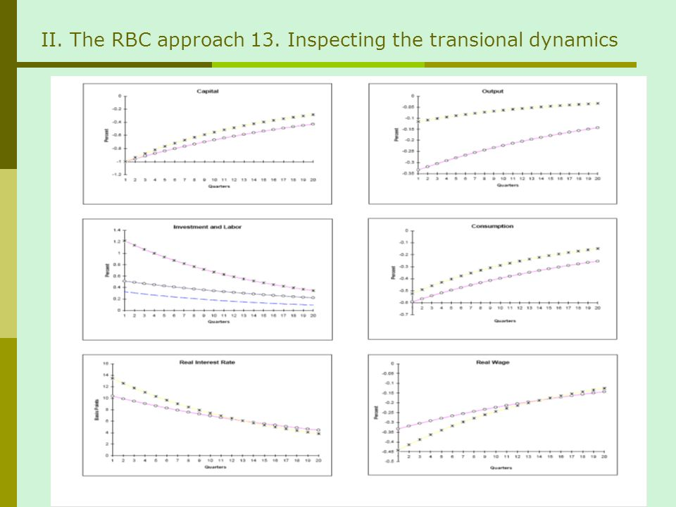II. The RBC approach 13. Inspecting the transional dynamics