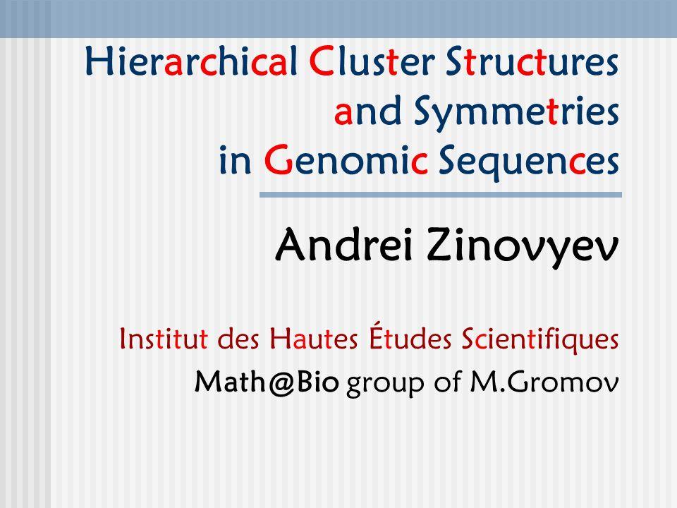 Hierarchical Cluster Structures and Symmetries in Genomic Sequences Andrei Zinovyev Institut des Hautes Études Scientifiques Math@Bio group of M.Gromov