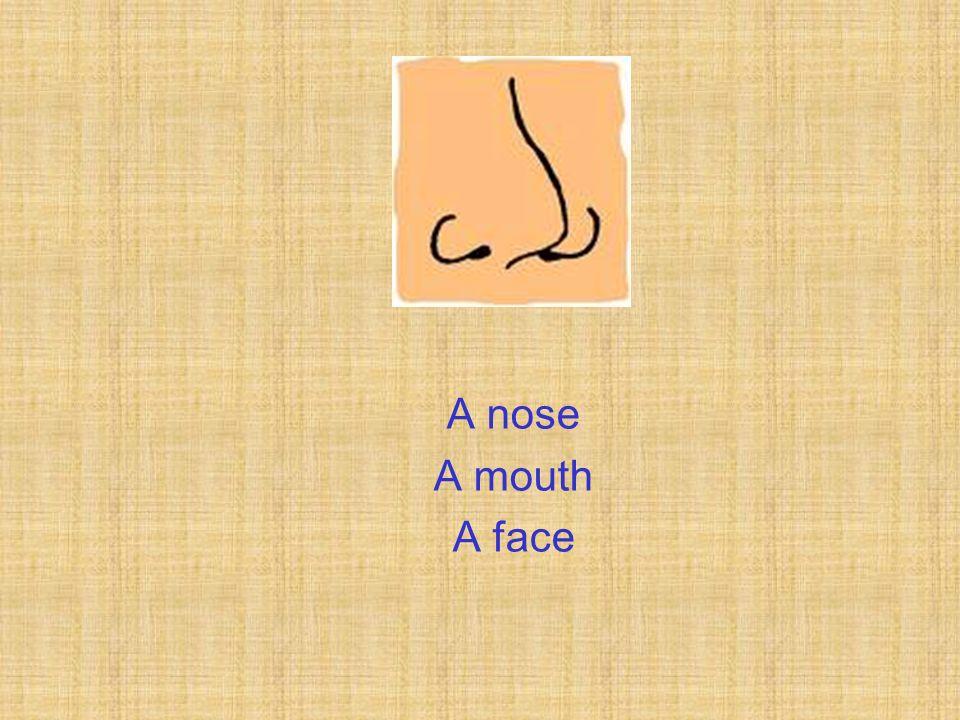 A nose A mouth A face