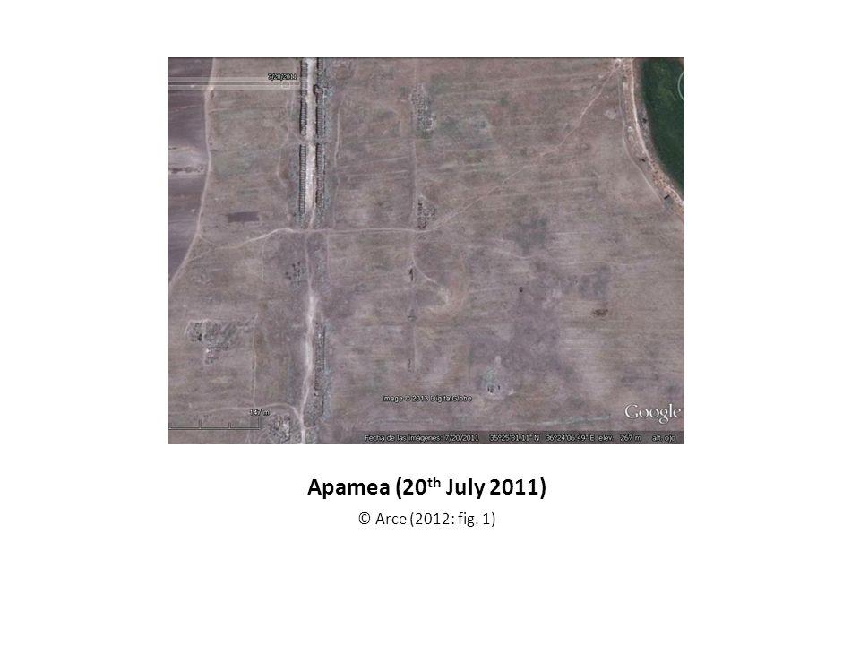 Apamea (20 th July 2011) © Arce (2012: fig. 1)