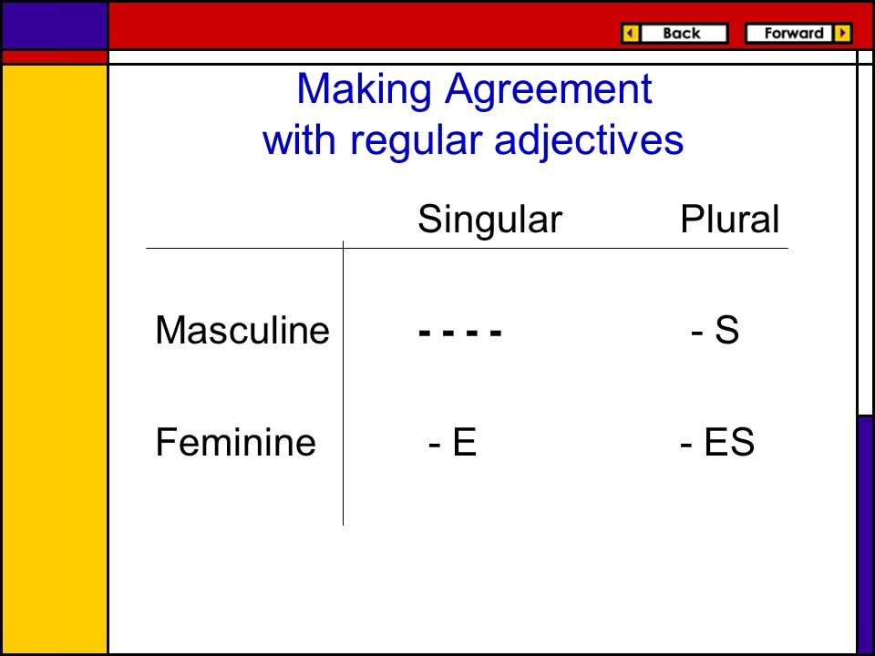 Making Agreement with regular adjectives SingularPlural Masculine- - - - - S Feminine - E- ES