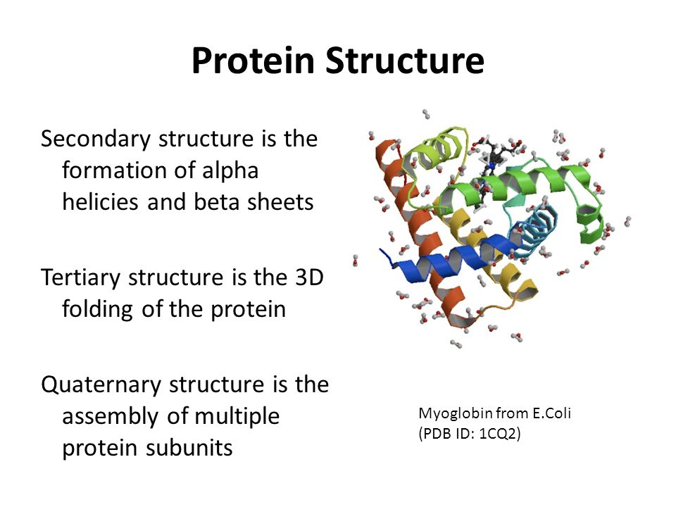 Protein Structure Secondary structure is the formation of alpha helicies and beta sheets Tertiary structure is the 3D folding of the protein Quaternar