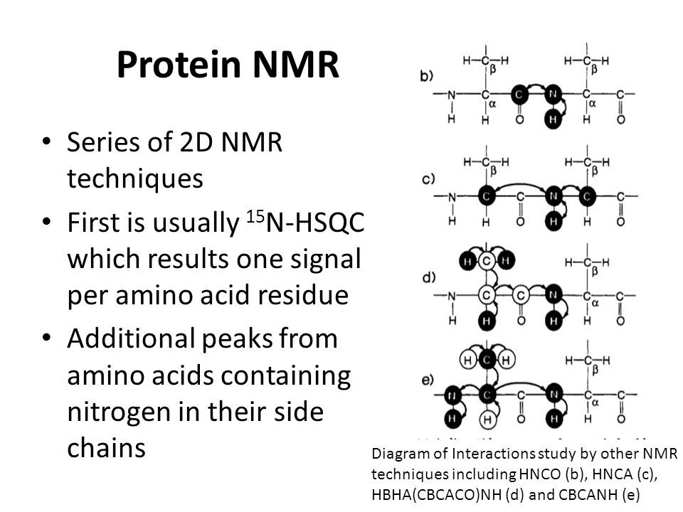 Protein NMR Series of 2D NMR techniques First is usually 15 N-HSQC which results one signal per amino acid residue Additional peaks from amino acids containing nitrogen in their side chains Diagram of Interactions study by other NMR techniques including HNCO (b), HNCA (c), HBHA(CBCACO)NH (d) and CBCANH (e)