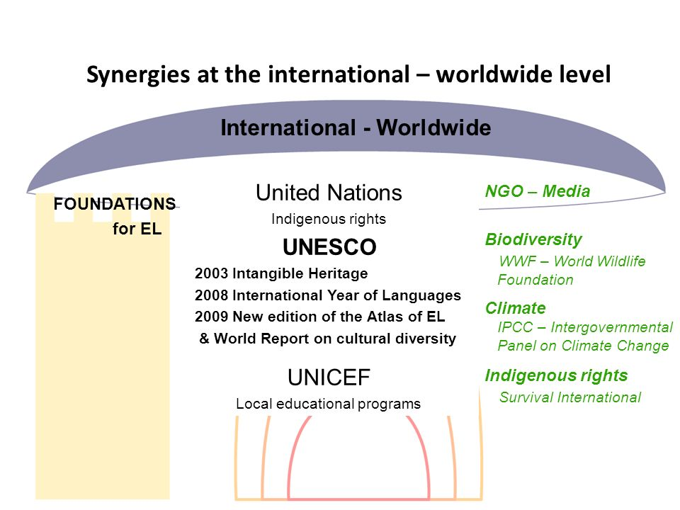 Synergies at the international – worldwide level FOUNDATIONS for EL NGO – Media Biodiversity WWF – World Wildlife Foundation Climate IPCC – Intergovernmental Panel on Climate Change Indigenous rights Survival International United Nations Indigenous rights UNESCO 2003 Intangible Heritage 2008 International Year of Languages 2009 New edition of the Atlas of EL & World Report on cultural diversity UNICEF Local educational programs International - Worldwide