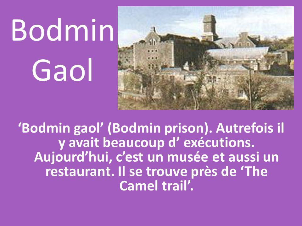 Bodmin Gaol Bodmin gaol (Bodmin prison). Autrefois il y avait beaucoup d exécutions. Aujourdhui, cest un musée et aussi un restaurant. Il se trouve pr