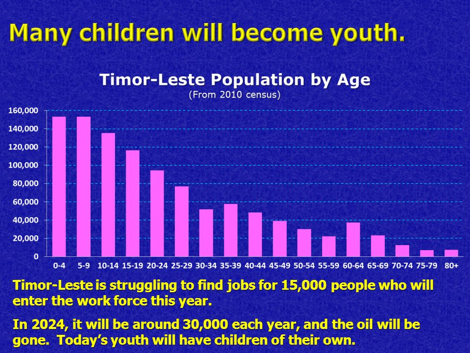 Timor-Leste is struggling to find jobs for 15,000 people who will enter the work force this year.