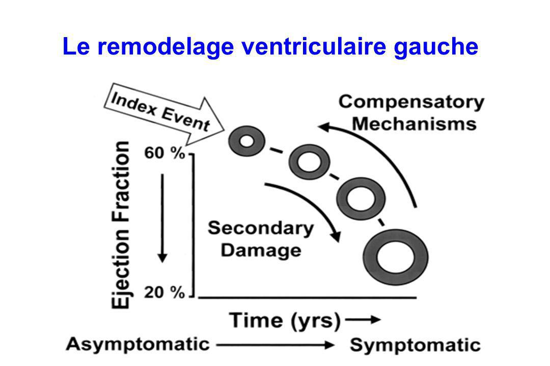Le remodelage ventriculaire gauche