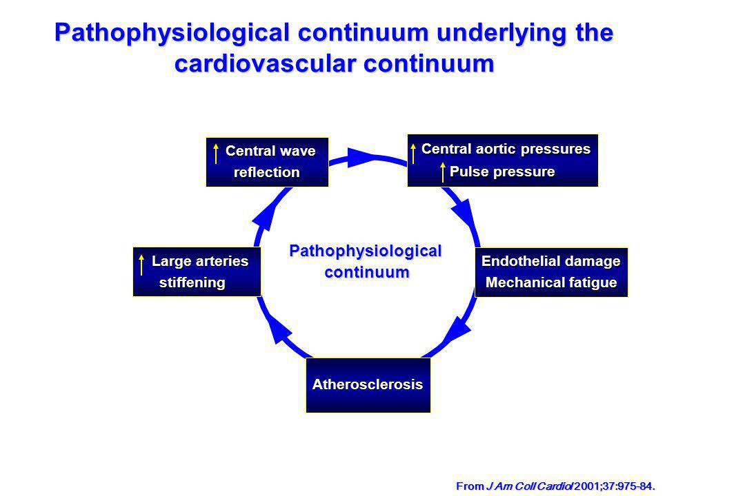 Pathophysiological continuum underlying the cardiovascular continuum From J Am Coll Cardiol 2001;37:975-84. Endothelial damage Mechanical fatigue Athe