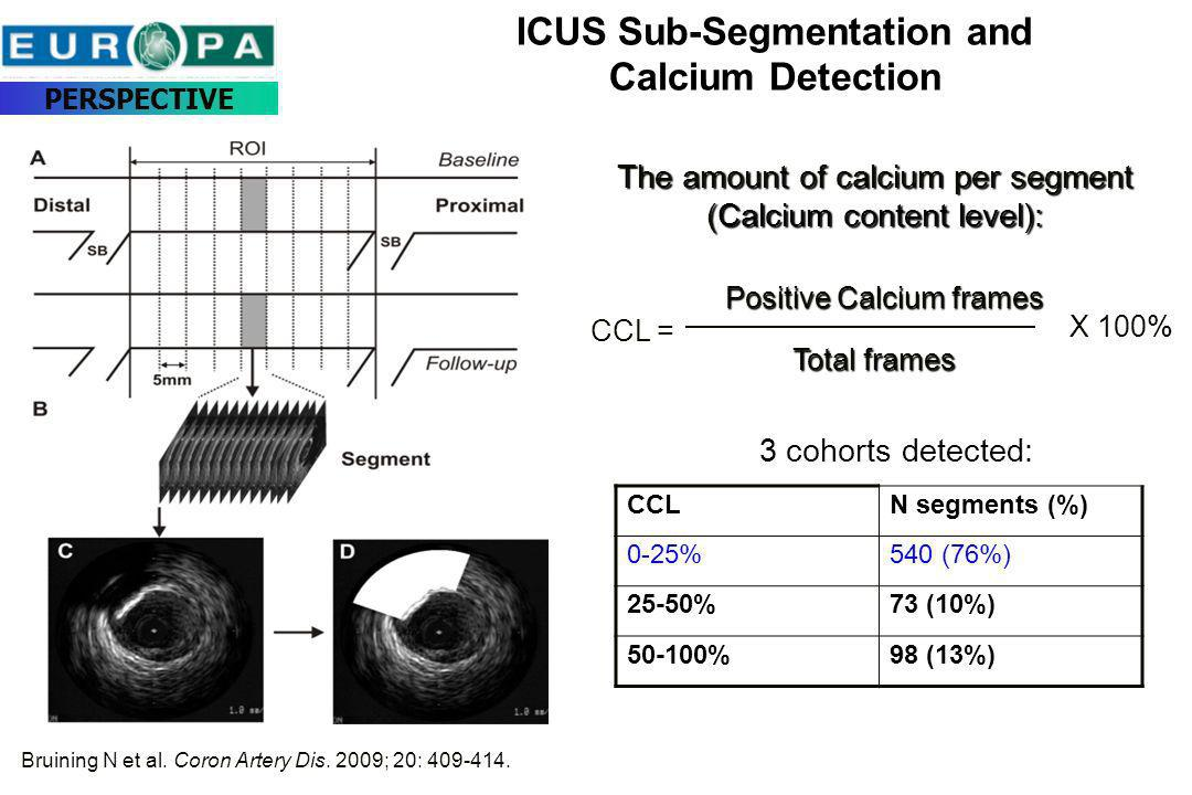 ICUS Sub-Segmentation and Calcium Detection The amount of calcium per segment (Calcium content level): Total frames Positive Calcium frames CCL = X 10