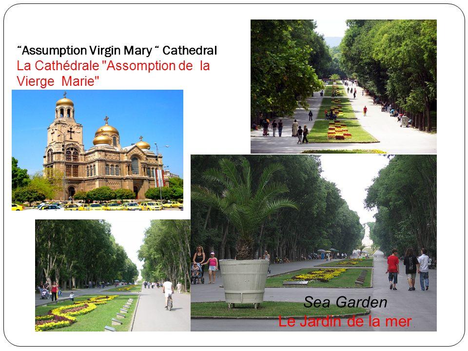 Assumption Virgin Mary Cathedral La Cathédrale Assomption de la Vierge Marie Sea Garden Le Jardin de la mer