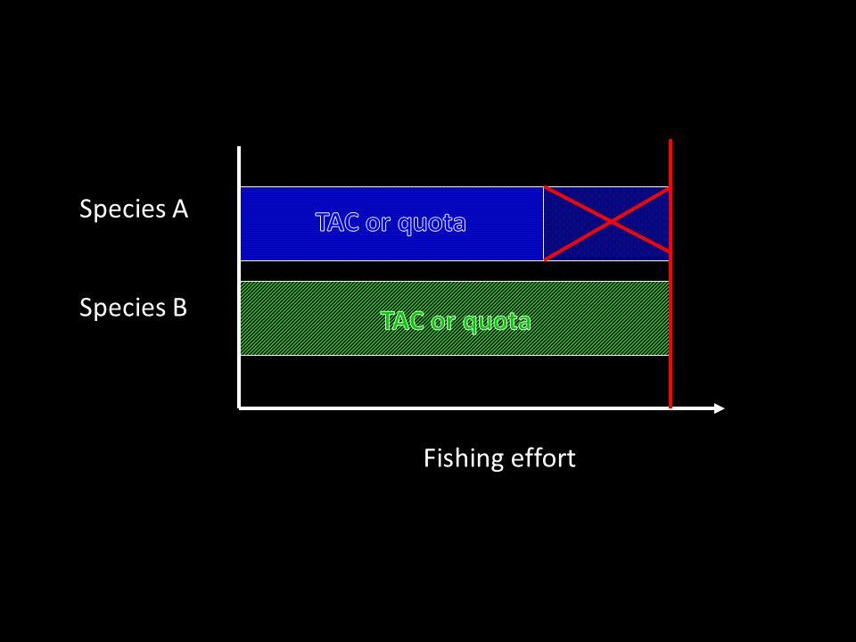 Fishing effort Species A Species B