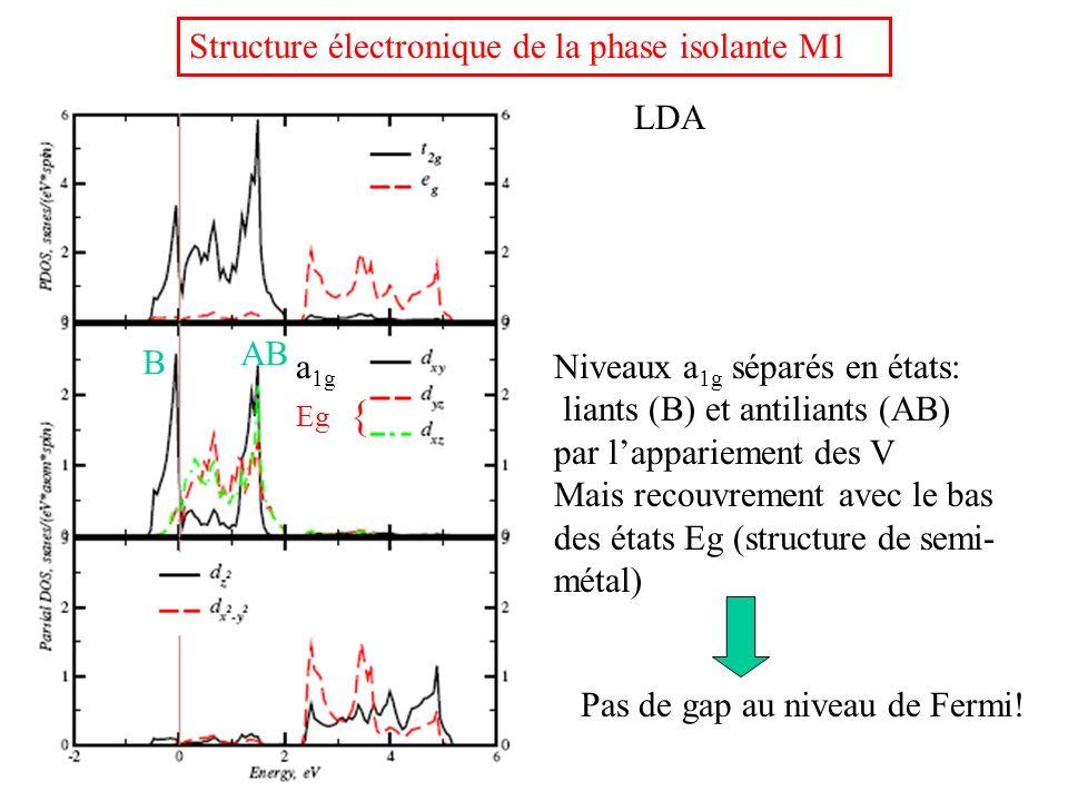 Structure électronique de la phase isolante M1 LDA Pas de gap au niveau de Fermi! Eg { a 1g B AB Niveaux a 1g séparés en états: liants (B) et antilian