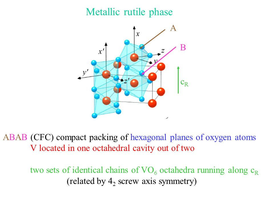 Metallic rutile phase cRcR ABAB (CFC) compact packing of hexagonal planes of oxygen atoms V located in one octahedral cavity out of two two sets of identical chains of VO 6 octahedra running along c R (related by 4 2 screw axis symmetry) A B